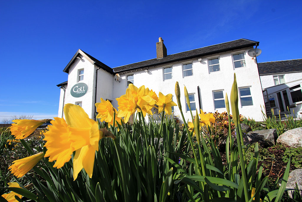 Coll Hotel Accommodation
